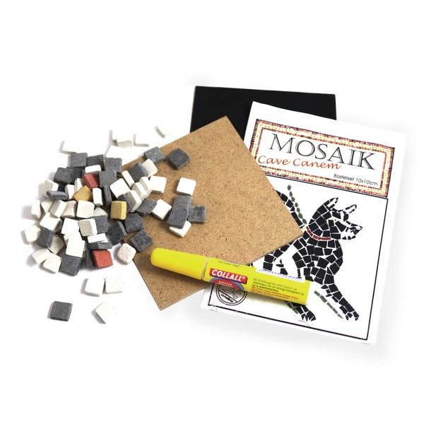 Mosaic craft set